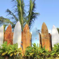 2 Maui Surf